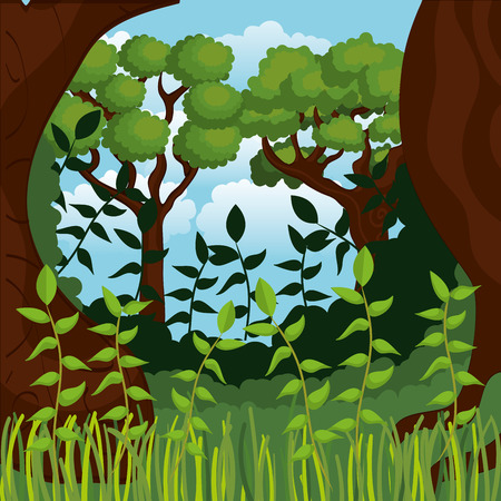 rainforest jungle natural scene vector illustration design Reklamní fotografie - 101665588