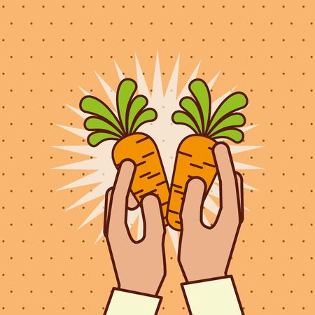 hand holding fresh vegetable carrots vector illustration