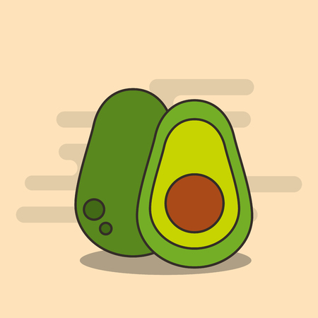 half avocado harvest nutrition diet vector illustration