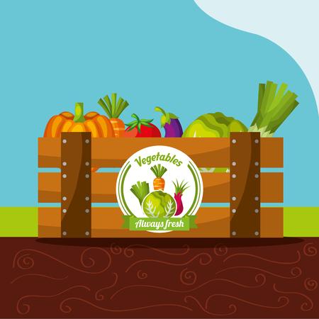 vegetables always fresh in wood basket vector illustration