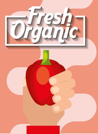 hand holding vegetable fresh organic pepper vector illustration Illustration
