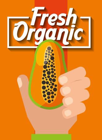 hand holding fresh organic fruit papaya vector illustration Stockfoto - 101809687