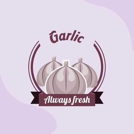 vegetable garlic always fresh emblem vector illustration Ilustração