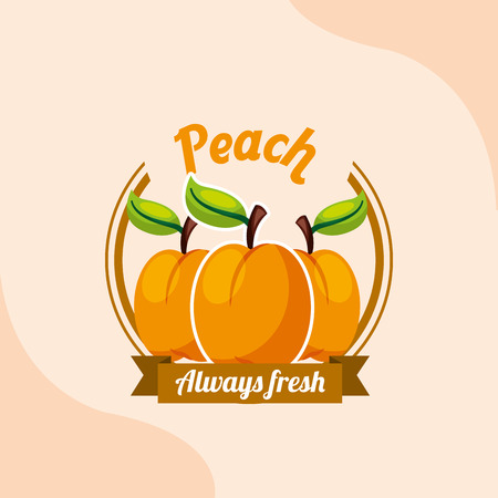 fruit peach always fresh emblem vector illustration
