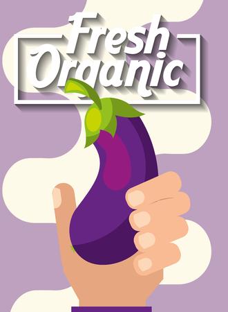 hand holding vegetable fresh organic eggplant vector illustration
