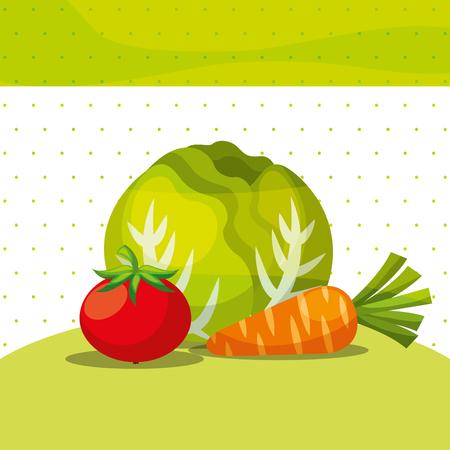 vegetables fresh organic healthy lettuce carrot tomato vector illustration
