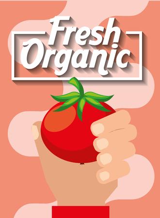 hand holding vegetable fresh organic tomato vector illustration