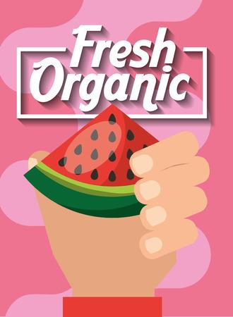 hand holding fresh organic fruit watermelon vector illustration