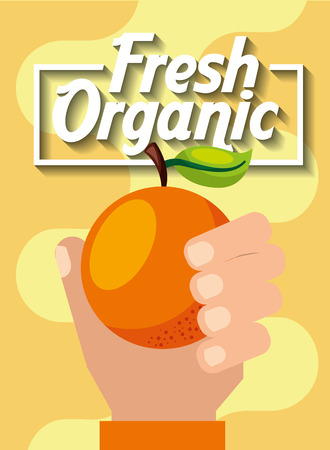 hand holding fresh organic fruit orange vector illustration Ilustração