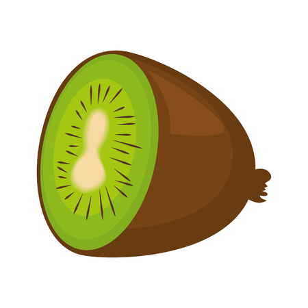 fresh kiwi fruit icon vector illustration design