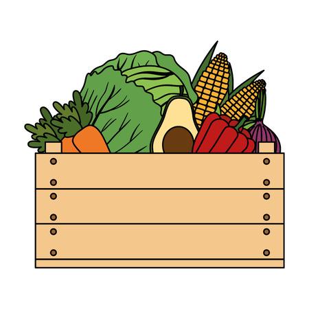 group of vegetables in wooden box vector illustration design