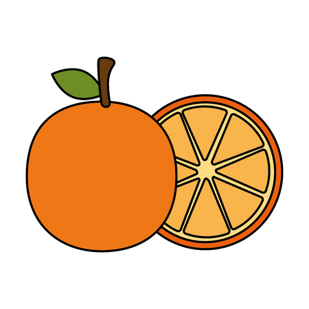fresh oranges fruits icon vector illustration design