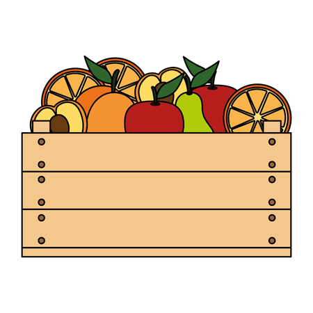 delicious fruits in wooden box vector illustration design