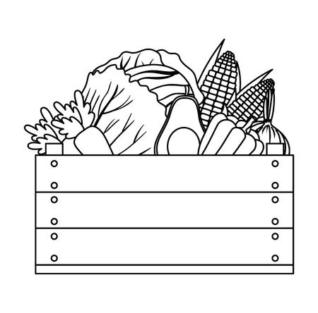 Grupo de verduras en caja de madera, diseño de ilustraciones vectoriales Foto de archivo - 101881231