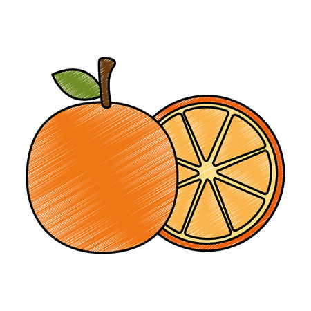 fresh oranges fruits icon vector illustration design