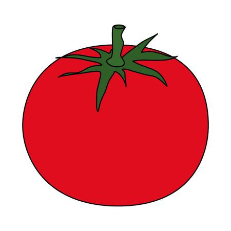 fresh tomatoe vegetarian food vector illustration design