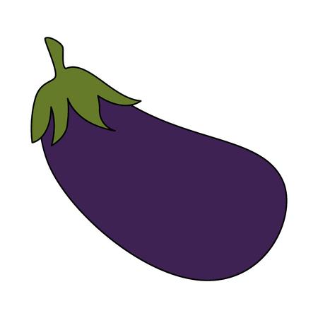 fresh eggplant vegetarian food vector illustration design