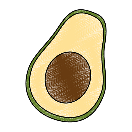 fresh avocados vegetarian food vector illustration design Illustration