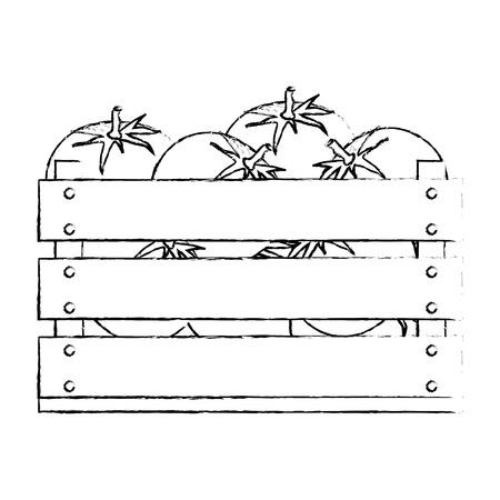 fresh tomatoes in wooden box vegetarian food vector illustration design Stock Illustratie