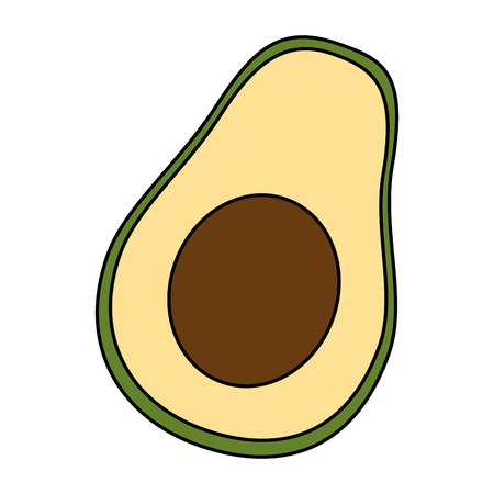fresh avocados vegetarian food vector illustration design  イラスト・ベクター素材