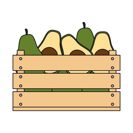 fresh avocados in wooden box vegetarian food vector illustration design Stock Illustratie