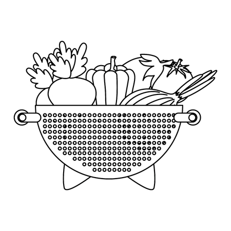 fresh vegetables in kitchen colander vector illustration design
