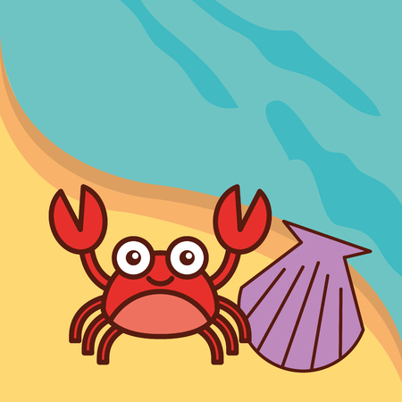 crab crustacean clam beach sea life cartoon vector illustration