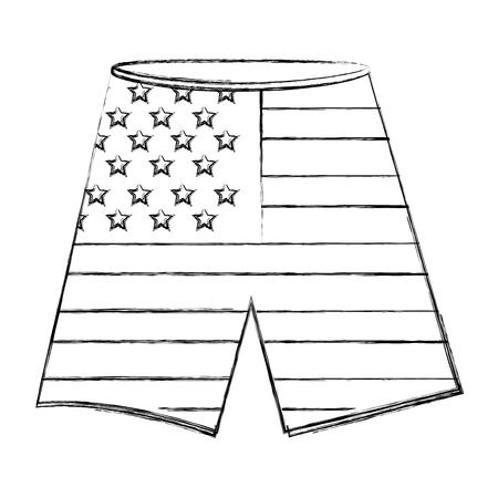 pants shorts with usa flag vector illustration design