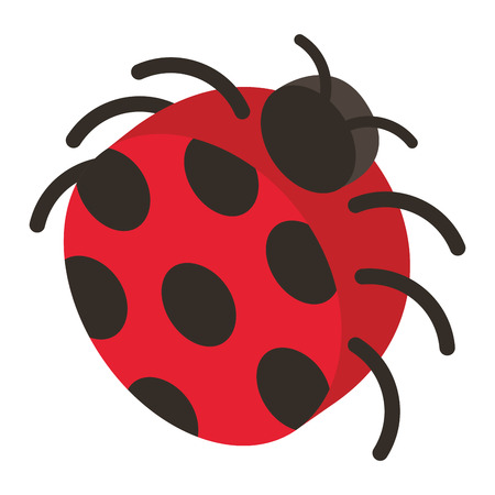 ladybug insect isometric icon vector illustration design