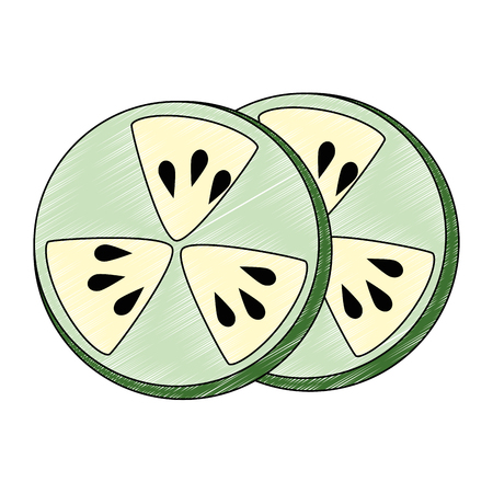cucumber slice fresh food vector illustration design Ilustração
