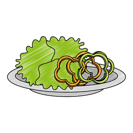 delicious vegetable salad on plate vector illustration design