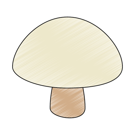 fresh mushroom healthy food vector illustration design