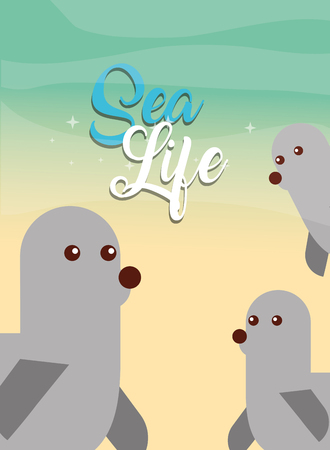 group of monk seals sea life vector illustration
