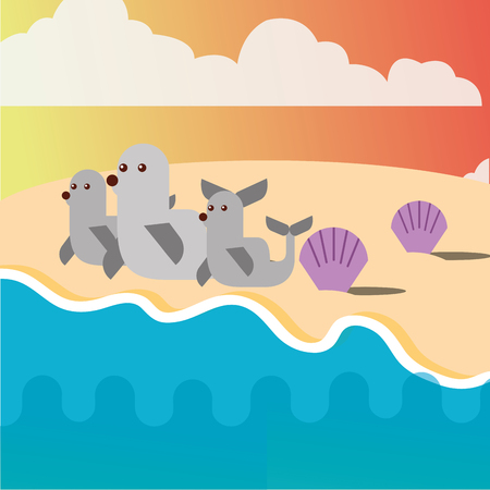 monk seal and clams in the beach sea life vector illustration