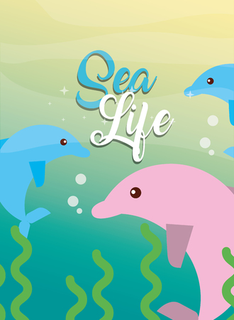 pink and blue dolphins animal under the sea life vector illustration