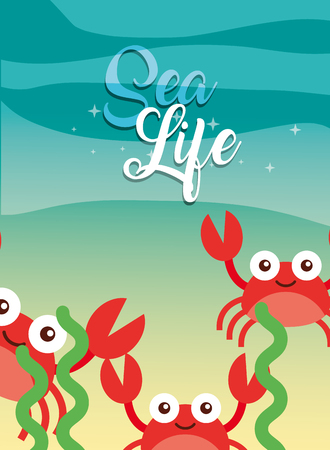 red crabs seaweed under the sea life vector illustration Illustration