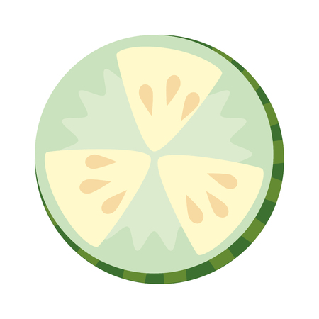 cucumber slice fresh food vector illustration design Ilustrace
