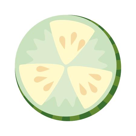 cucumber slice fresh food vector illustration design Illustration