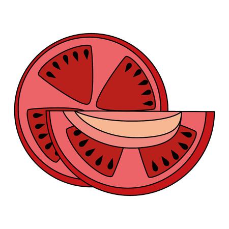 fresh tomato slide healthy food vector illustration design