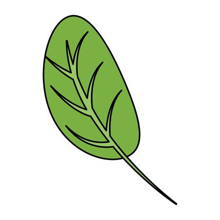 kitchen leafs ingredients healthy food vector illustration design Stock Illustratie