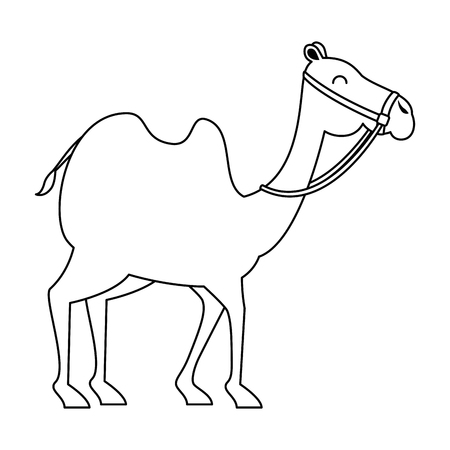 camel animal transport arabe vector illustration design Stock Illustratie