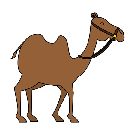 camel animal transport arabe vector illustration design Illustration