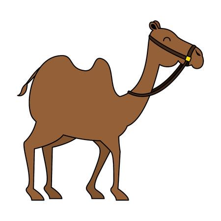 Transporte de animales en camello árabe, diseño de ilustraciones vectoriales Ilustración de vector