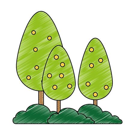 árboles, plantas, bosque, icono, vector, ilustración, diseño