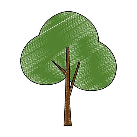 tree plant forest icon vector illustration design Stockfoto - 102404096