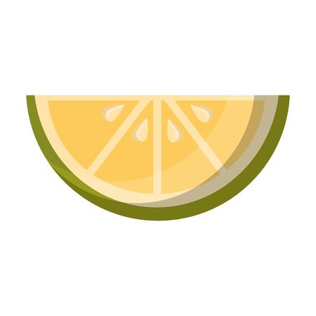 slice lemon citurs fresh image vector illustration Illustration