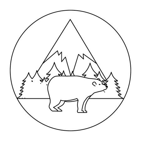 wild bear grizzly icon vector illustration design Stock Vector - 102699062