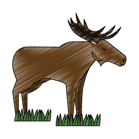 Canadian elk wild icon vector illustration design