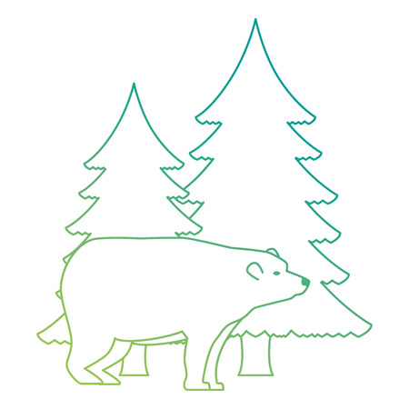 bear grizzly with pines forest vector illustration design