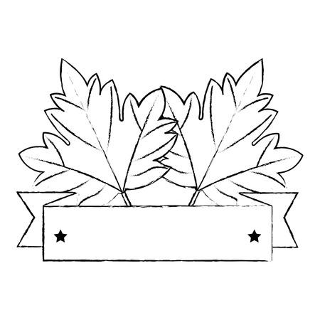 maple leaf emblem icon vector illustration design
